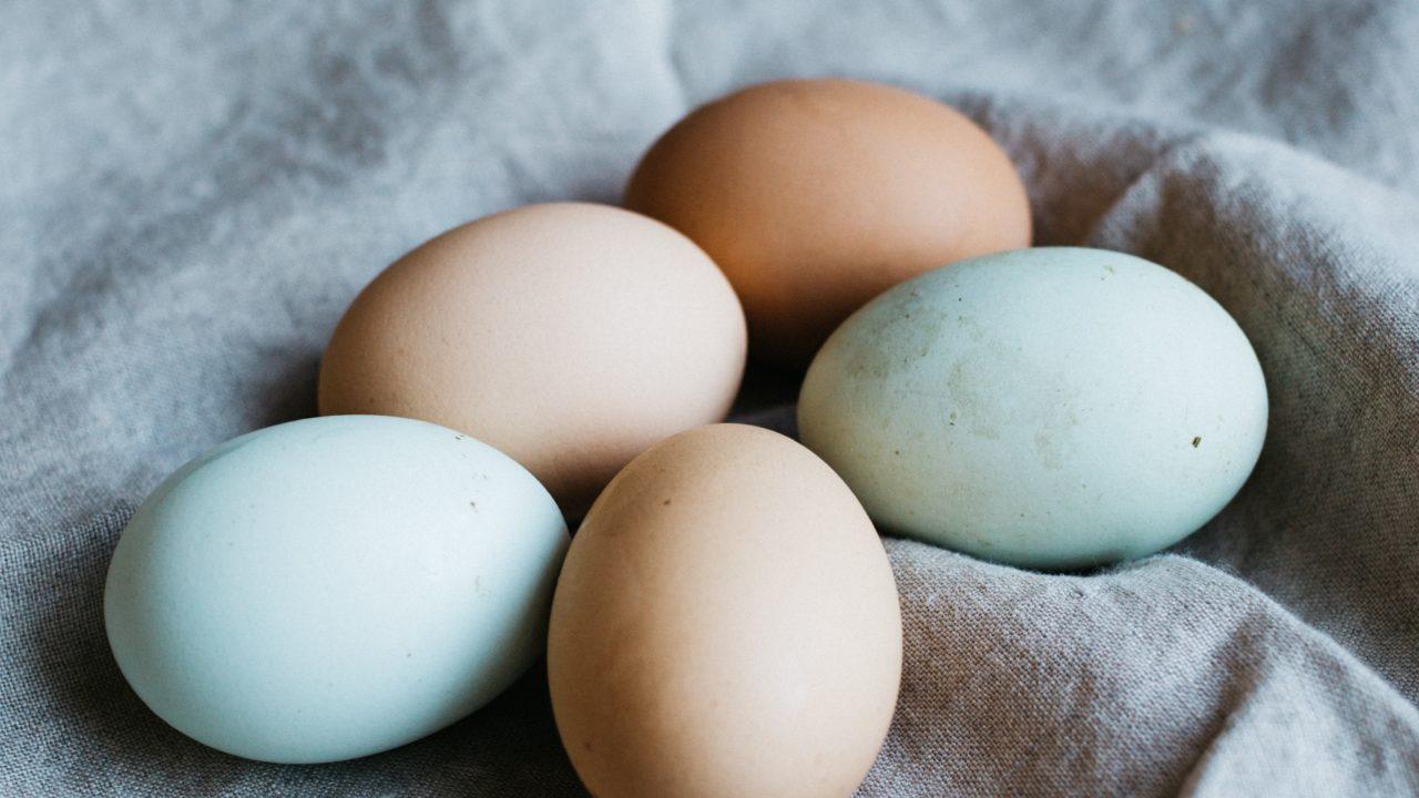 半熟 賞味 期限切れ 卵